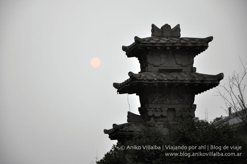 chengdu-aniko-villalba-26