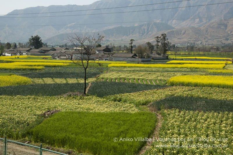 china-xichang-aniko-villalba10