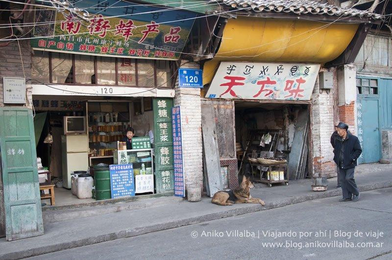 china-xichang-aniko-villalba36