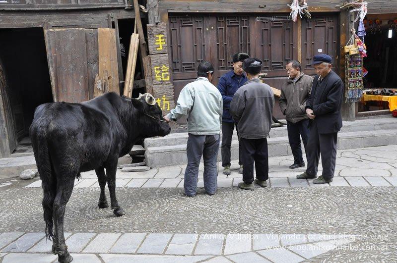 fotos-china-aniko-villalba-04
