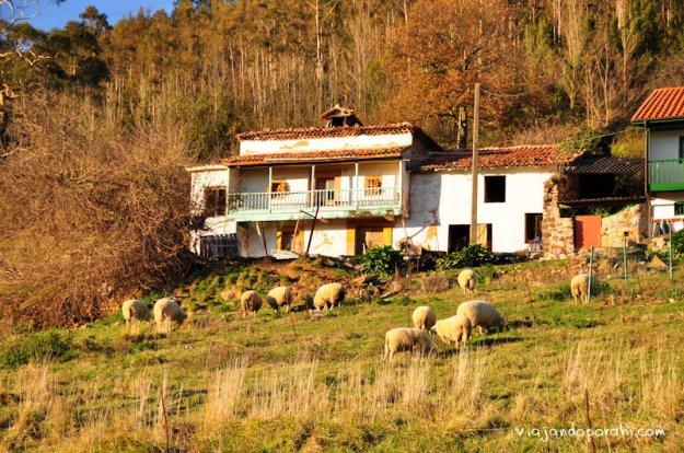 asturias-aniko-villalba-15