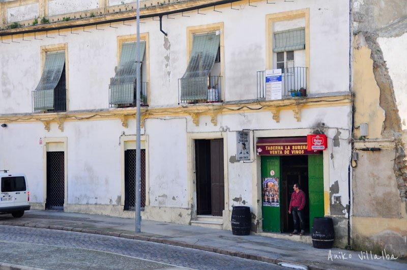 jerez-de-la-frontera-andalucia-aniko-villalba-10