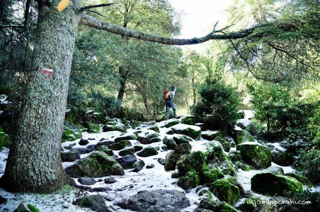 nieve-azrou-viajando-por-ahi-1-3