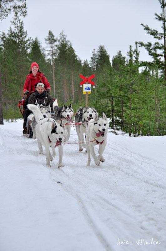 laponia-sueca-aniko-villalba-10