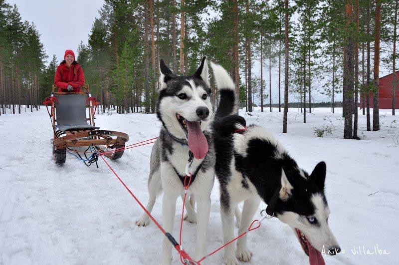 laponia-sueca-aniko-villalba-8