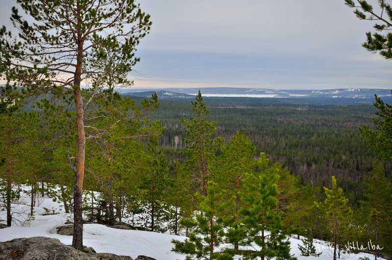 laponia-sueca-aniko-villalba-50