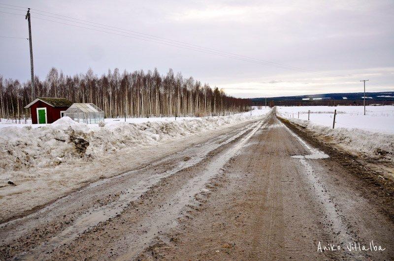 laponia-sueca-aniko-villalba-67