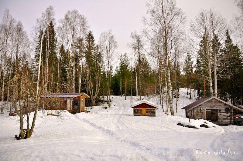 laponia-sueca-aniko-villalba-103