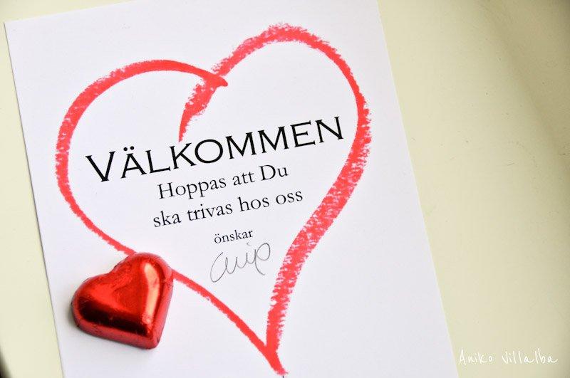 laponia-sueca-aniko-villalba-162