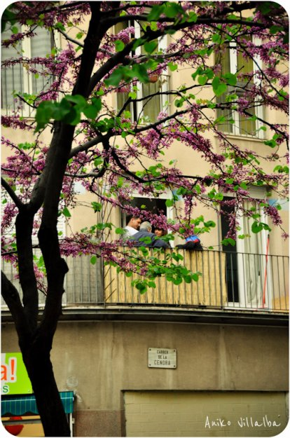barcelona-callejeras-aniko-villalba-53