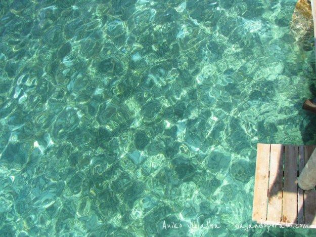 mar-roatan-honduras