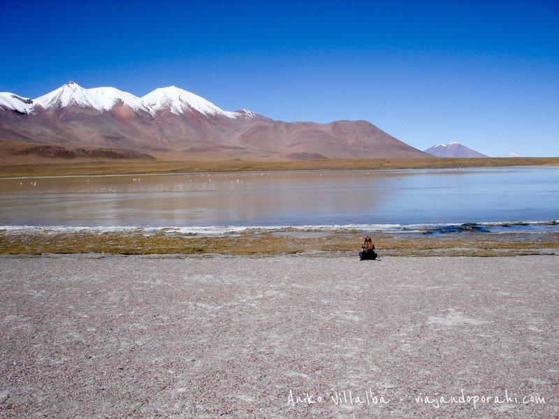 altiplano-bolivia