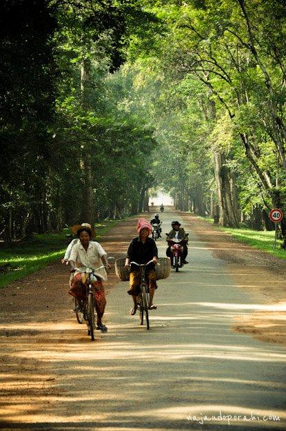 bicicleta-aniko-villalba-1-3
