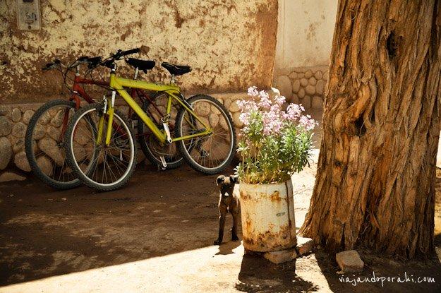 bicicleta-aniko-villalba-1