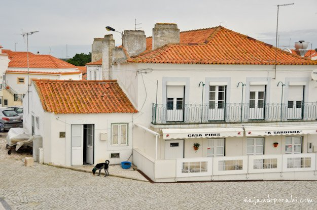 nazare-portugal-17