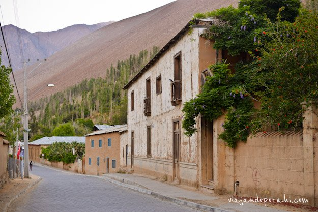 valle-de-elqui-chile-aniko-villalba-3