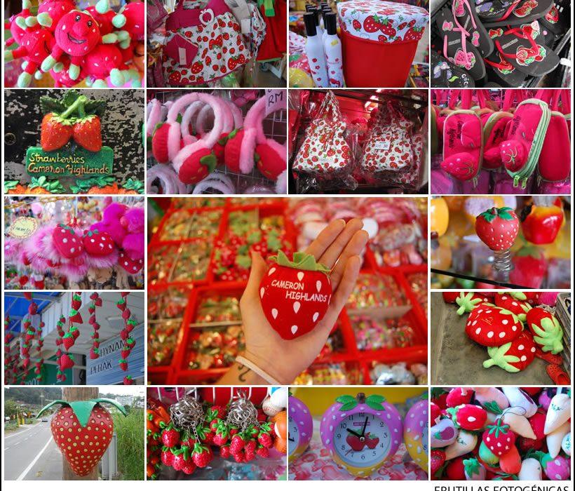 frutillasfotogenicas4