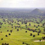 Camboya: cosas que veo desde la ventana (y que escucho desde el asiento de atrás)