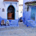 Chefchaouen: instantáneas de un pueblito azul