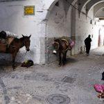 """""""Bienvenidos a nuestro mundo"""": Tres días en la medina de Tetouan"""