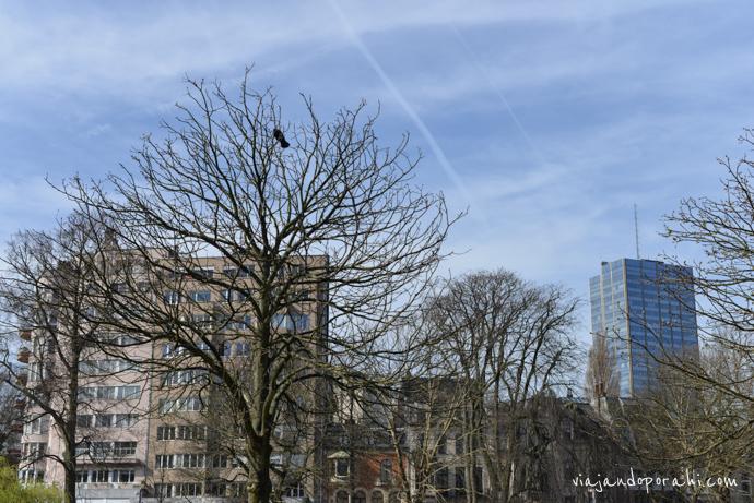bruselas-belgica-viajandoporahi-7