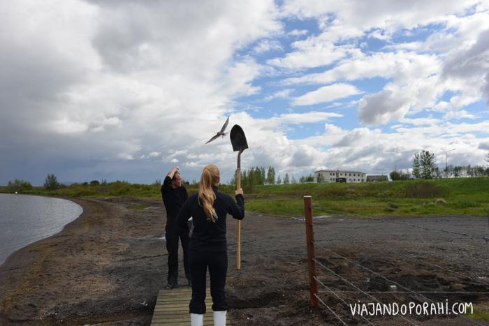 islandia-aniko-villalba-26