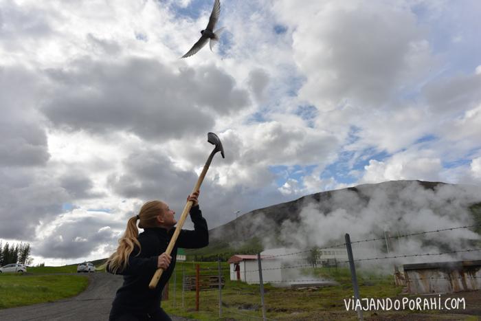 islandia-aniko-villalba-28