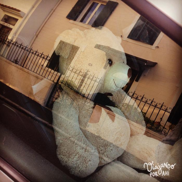Un oso encerrado