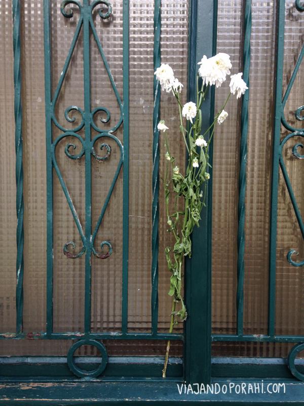 Flores en la puerta