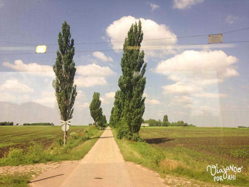 Más paisajes