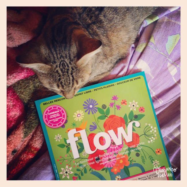 revista-flow-1