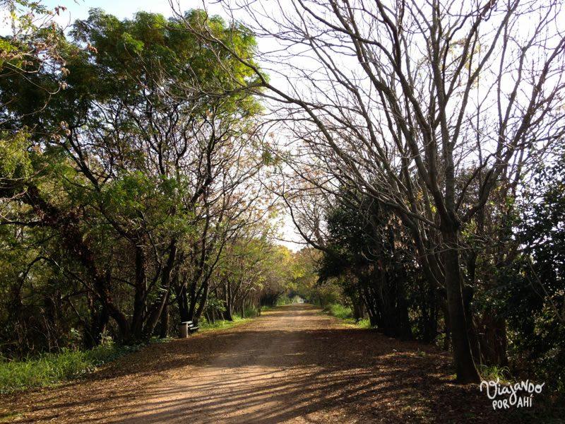 La Reserva Ecológica