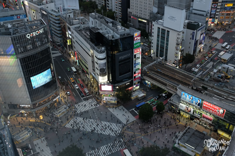 El cruce de Shibuya, donde a veces cruzan 2500 personas a la vez