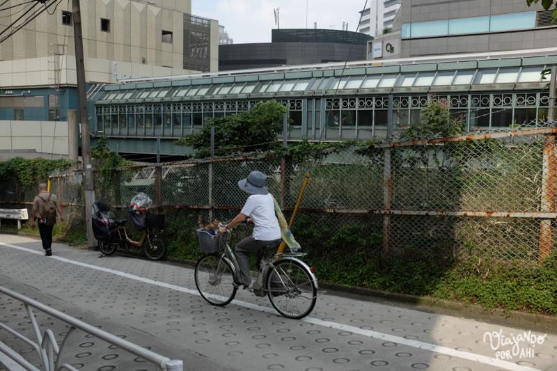 Y aún así, con el mejor transporte público, mucha gente elige ir en bici.