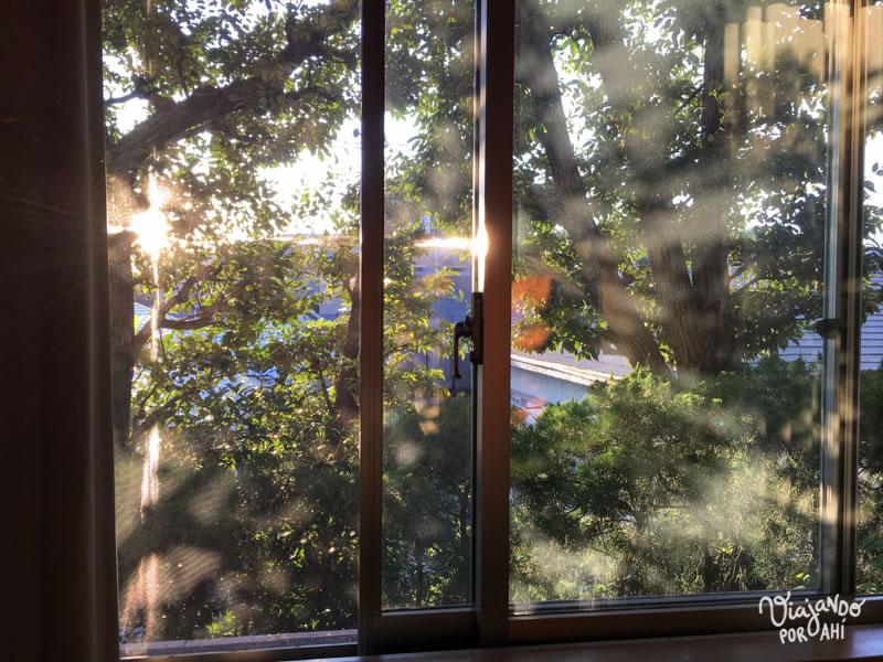 La luz de la mañana en nuestro cuarto.