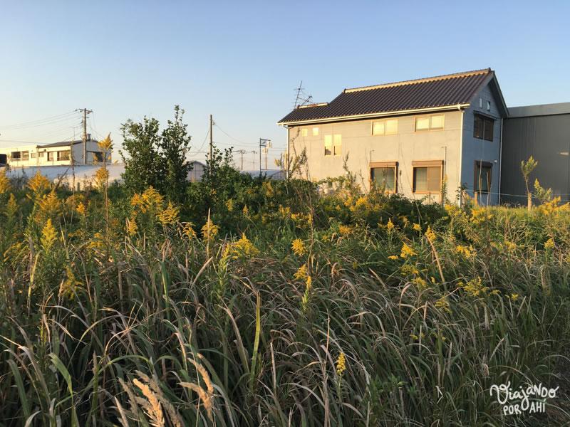 kujukuri-chiba-japon-11
