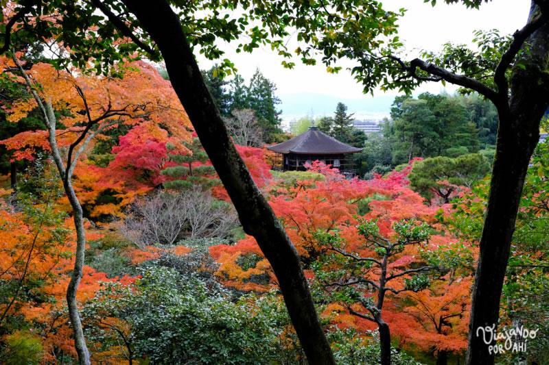 kyoto-kansai-viaje-japon-10