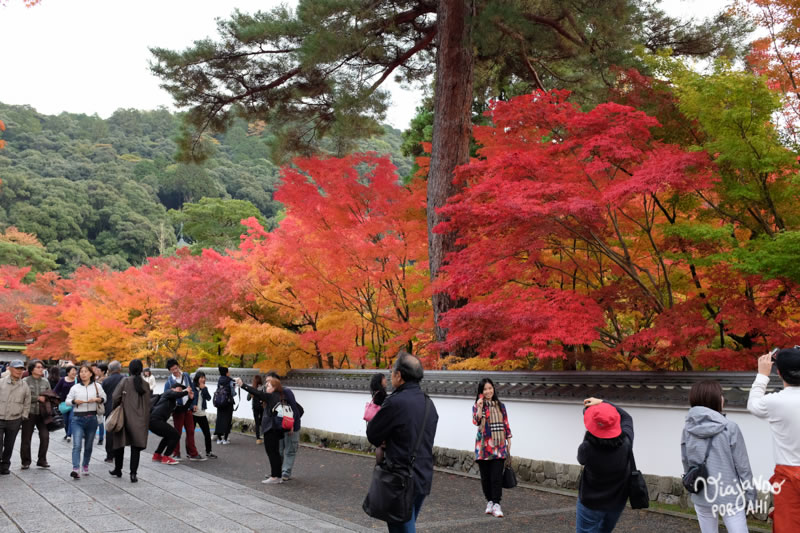 kyoto-kansai-viaje-japon-11