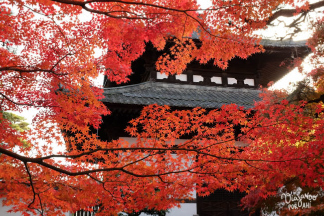 kyoto-kansai-viaje-japon-16