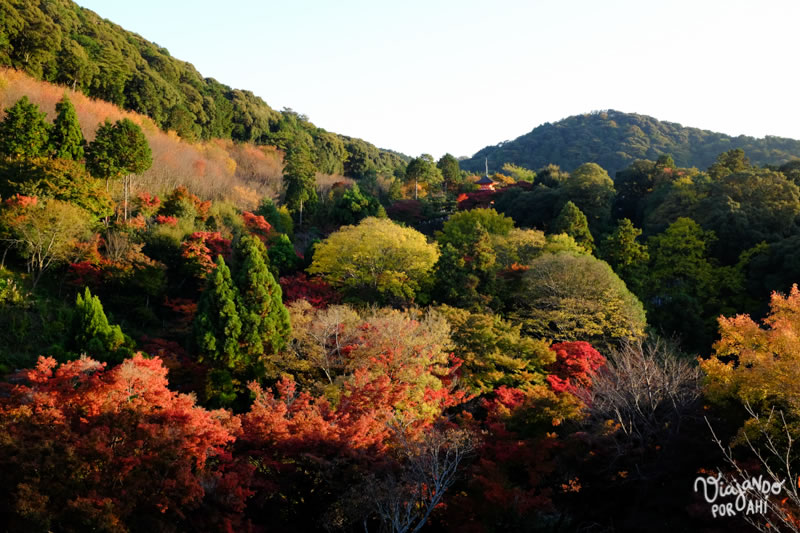 kyoto-kansai-viaje-japon-17