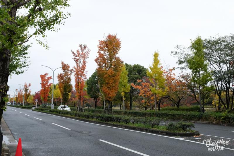 Primera vista de las calles de Kyoto.