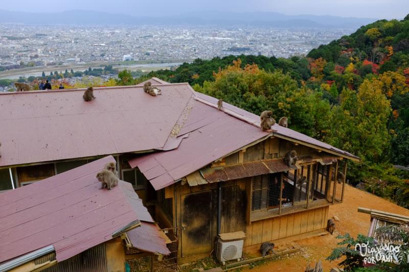 kyoto-kansai-viaje-japon-25