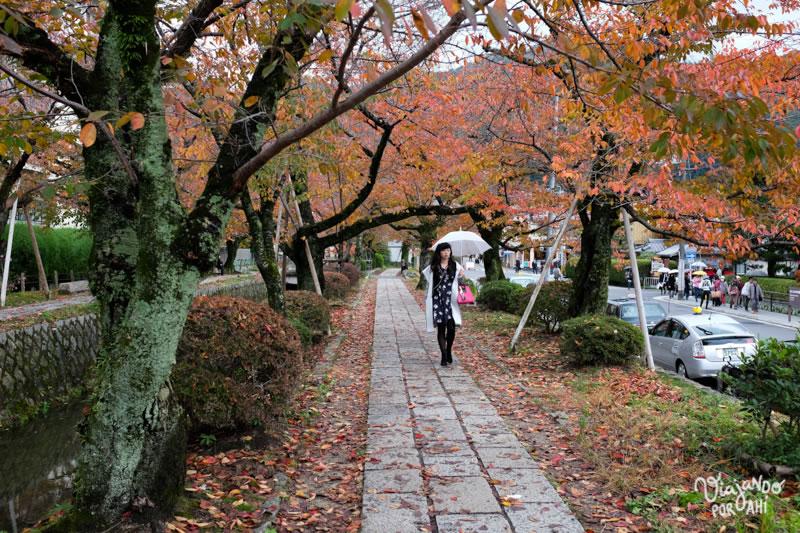 kyoto-kansai-viaje-japon-6