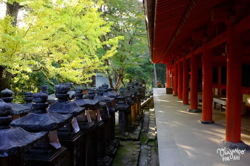 nara-kansai-viaje-japon-7