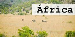 africa-sb
